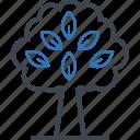 environment, plant, spring, tree icon