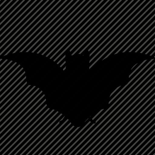 bat, halloween, vampire icon