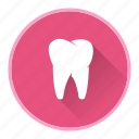 dentist, dentistry, health, teeth icon