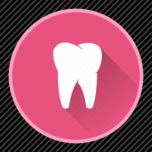 dentist, dentistry, health, teeth icon