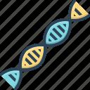 biology, dna, gene, genetic, helix, spiral, test
