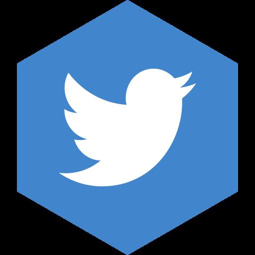 hexagon, media, social, twitter icon