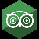 advisor, gloss, hexagon, media, social, trip icon