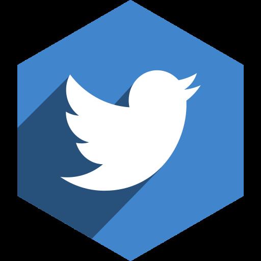 hexagon, media, shadow, social, twitter icon