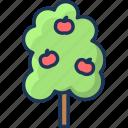 harvest, nature, summer, tree icon