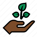 agriculture, farming, growing, hand, plant, planting, seedling icon