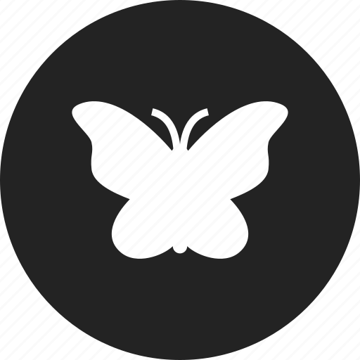 butterfly, freedom, light, peace icon