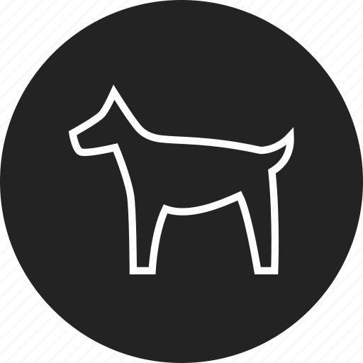 dog, pet, puppy, vet icon