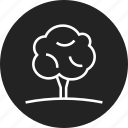 eco, grow, nature, tree icon