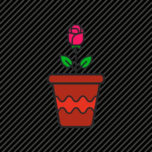 flower, flower pot, gardening, pot icon