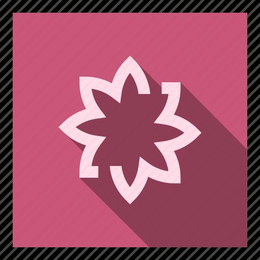 app, edit, gallery, image, images, presentation, slider icon