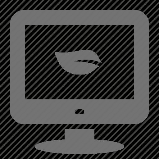 computer, desktop, ecology, efficient, energy, leaf, screen icon
