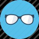 eyeglasses, spectacles, shades, specs, glasses