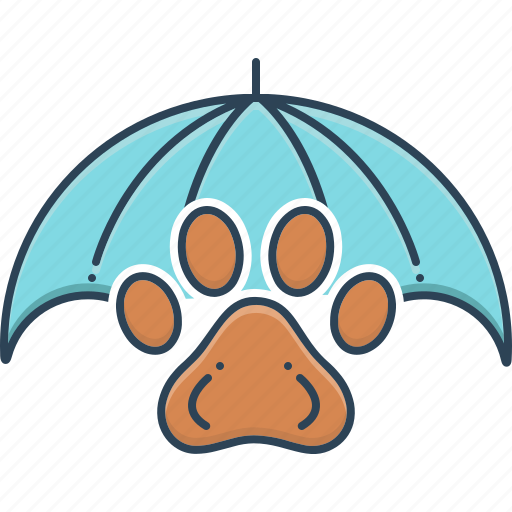 animal, insurance, owner, pet, pet insurance, safety icon
