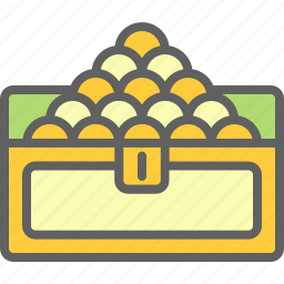 business, chest, coin, economy, finance icon