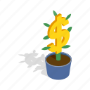 business, dollar, finance, growth, isometric, money, tree icon