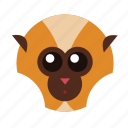animal, ape, chimp, monkey, nature, wild, zoo icon