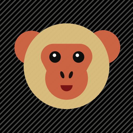 animal, ape, chimp, monkey, nature, wild, zoo icon