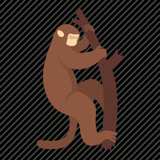 animal, macaque, mammal, monkey, nature, primate, wildlife icon