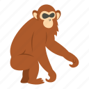 animal, dusky, leaf, monkey, nature, primate, wildlife icon