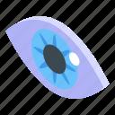 iris, eye, authentication, isometric