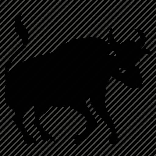 animal, bull, horns, wild icon