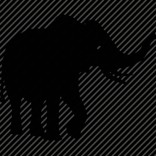 animal, beast, elephant, ivory icon
