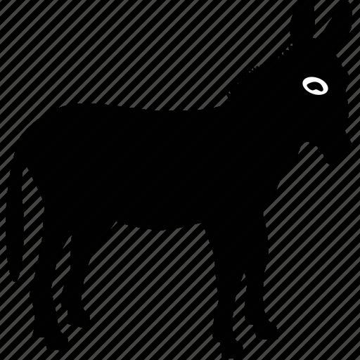 animal, beast, donkey, horse icon