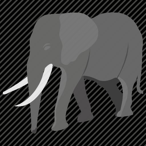 animal, creature, elephant, fighter animal, wild animal icon