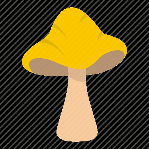 autumn, big mushroom, boletus, cooking, eat, food, forest icon