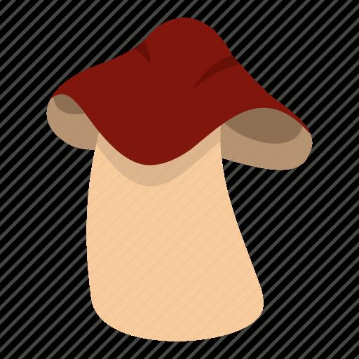 autumn, biology, bolete, boletus, brown, cap, cooking icon