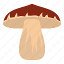 brown, biology, cap, cooking, autumn, forest mushroom, bolete icon