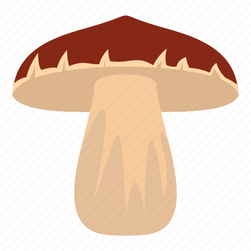 autumn, biology, bolete, brown, cap, cooking, forest mushroom icon