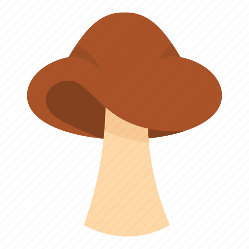 autumn, biology, bolete, brown, cap, cooking, small mushroom icon