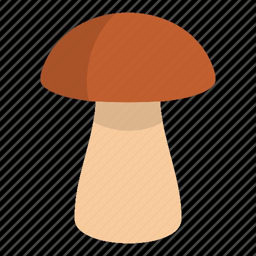 autumn, biology, bolete, brown, cap, cooking, fungus boletus icon
