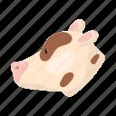 animal, calf, domestic, farm, head, pet, snout