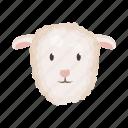 animal, domestic, farm, head, lamb, pet, snout