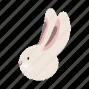 animal, domestic, farm, head, pet, rabbit, snout