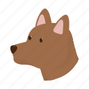 animal, dog, domestic, farm, head, pet, snout