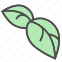 leafs, leaves, plant icon