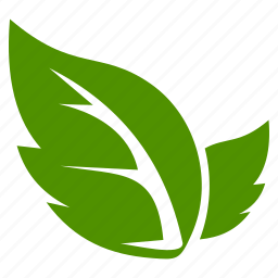 agriculture, ecology, green, leaf, leaves, natural icon