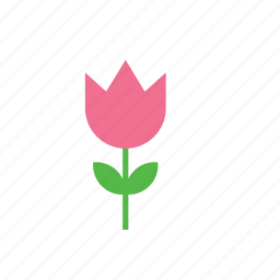 flower, nature, rose icon