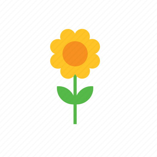 flower, natural, nature, sunflower icon