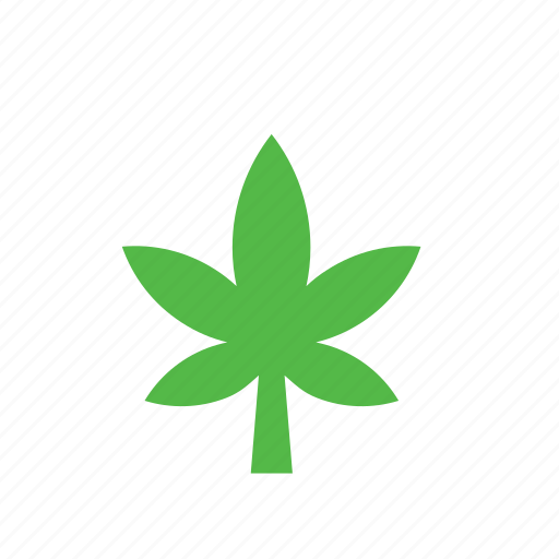 leaf, marijuana, natural, nature icon