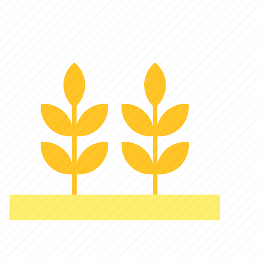 field, natural, nature, plant, wheat, yellow icon