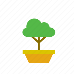bonsai, flowerpot, natural, nature, small, tree icon