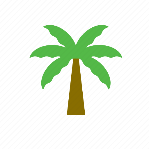 natural, nature, palm, tree icon