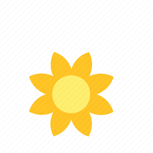 bloom, flower, natural, nature, sun, sunflower icon