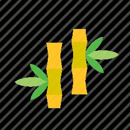 bamboo, natural, nature icon