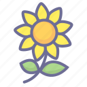 flower, natural, nature, vegetation icon